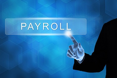 Payroll software, a must or a don't?